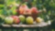 Apfel Rezepte und Tipps